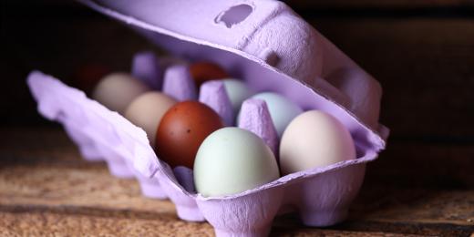 Diese farbigen Eierschachteln sind...