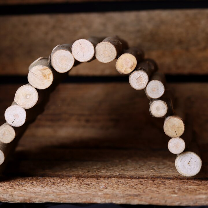 Holzbrücke für Zwergwachteln