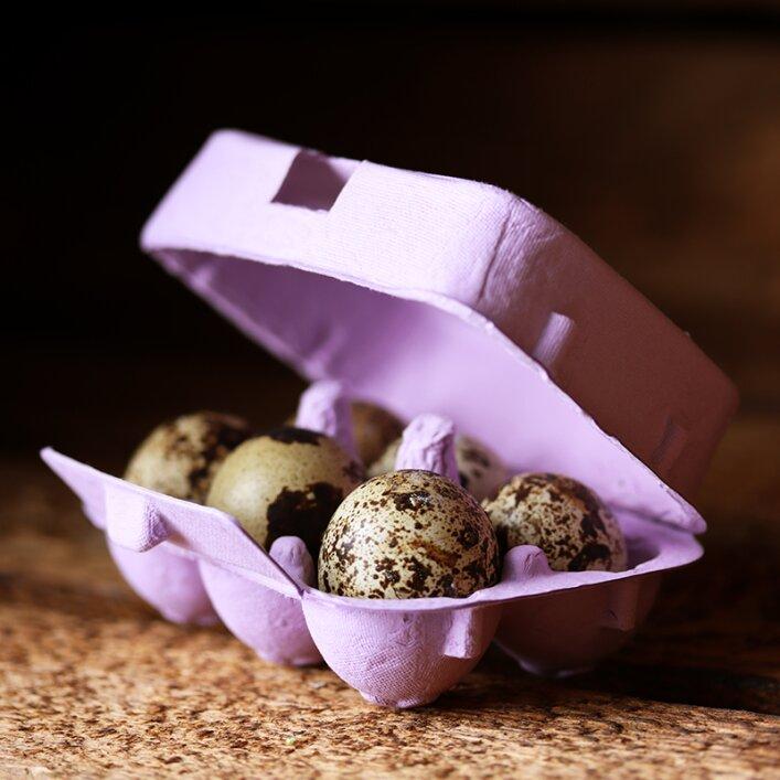 6er Wachteleierschachtel Pappe - Lavender
