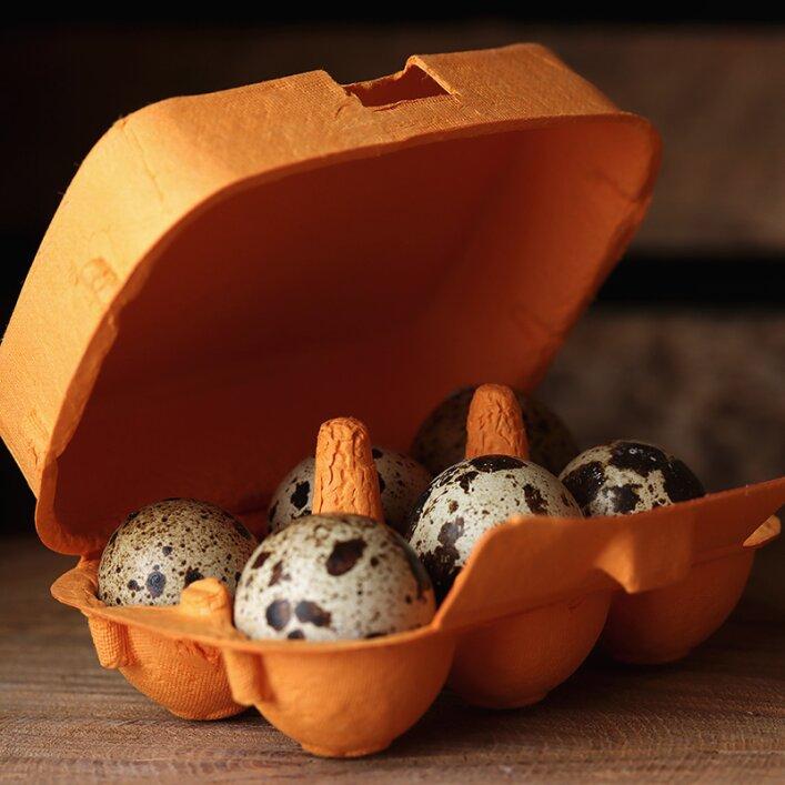 6er Wachteleierschachtel Pappe - Orange