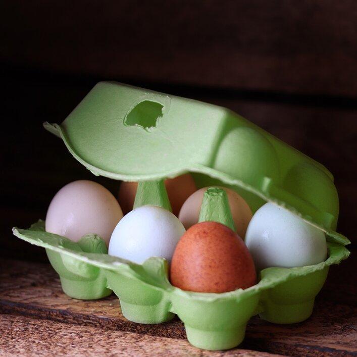 6er Hühnereierschachtel Pappe - Green