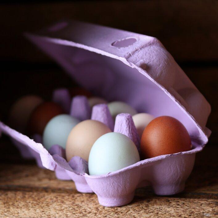 10er Hühnereierschachtel Pappe - Lavender